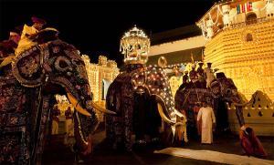 Sri-Lanka-Kandy-Esala-Perahera3